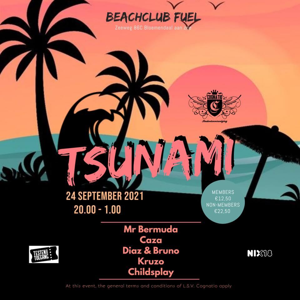 Strandfeest: Tsunami
